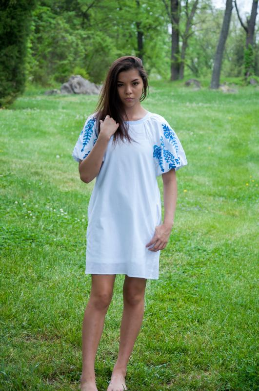 White Dress with Blue Detail Trim on Sleeve